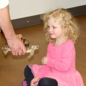 Critter Connections in The Harry and Jeanette Weinberg Inter-Generational Center