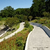 Accessible Path in Brooklyn Botanic Garden