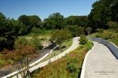Accessible Path in Brooklyn Botanic Garden